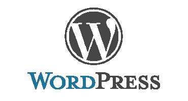 Sécurité Wordpress : sécuriser votre site en 16 points