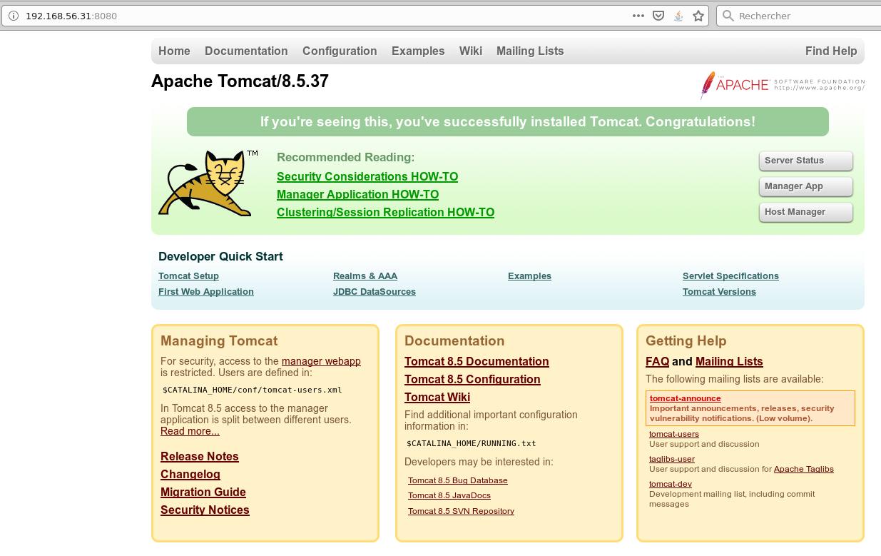 Tomcat exploit variant : host-manager   Certilience
