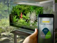 aquarium connécté - le thermomètre connecté à internet à l'origine d'une attaque de pirate, faille de sécurité des IoT